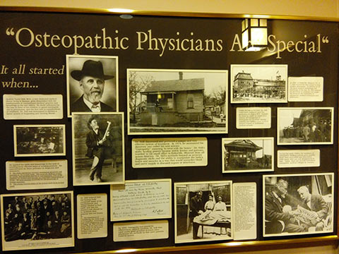 Osteopatic Physicians Are Special